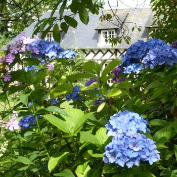 Jardin Le Clos de Chanchore à Fresne-Cauverville